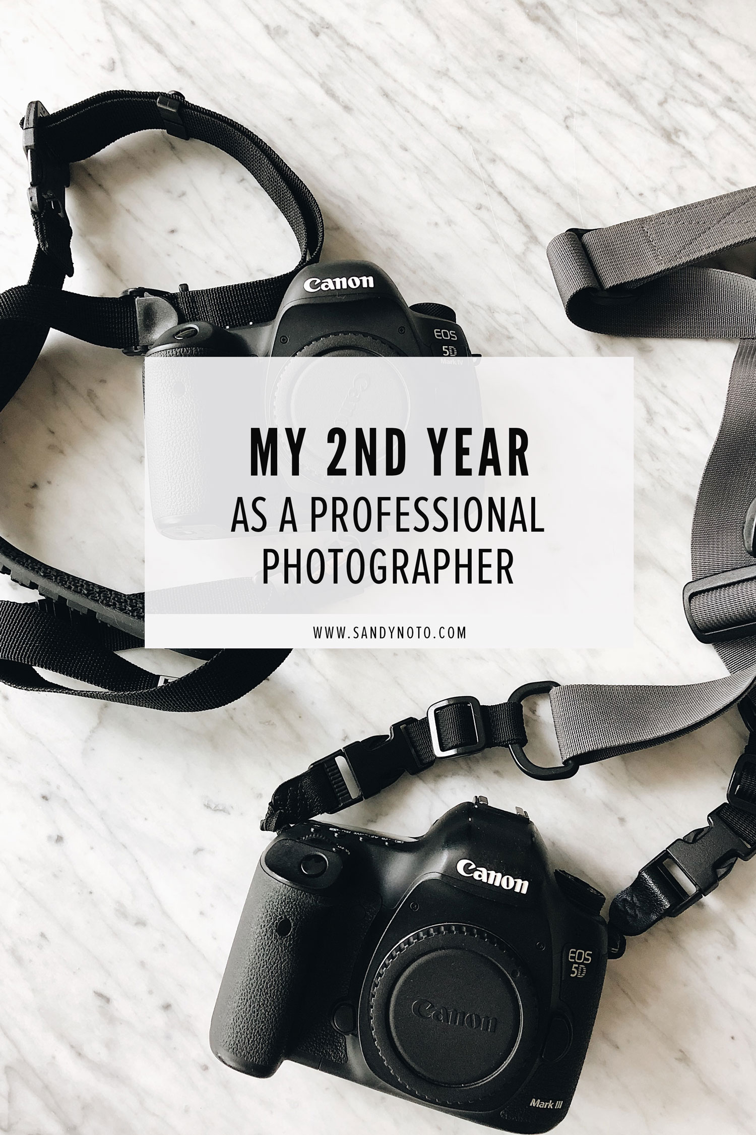 2nd year as a photographer