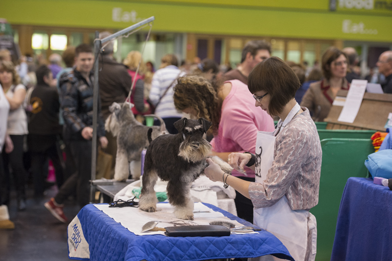 Crufts 2015 - Day 4