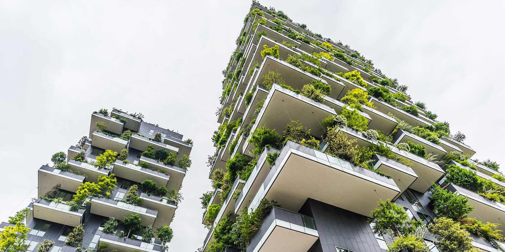 house-design-build-green-building-5