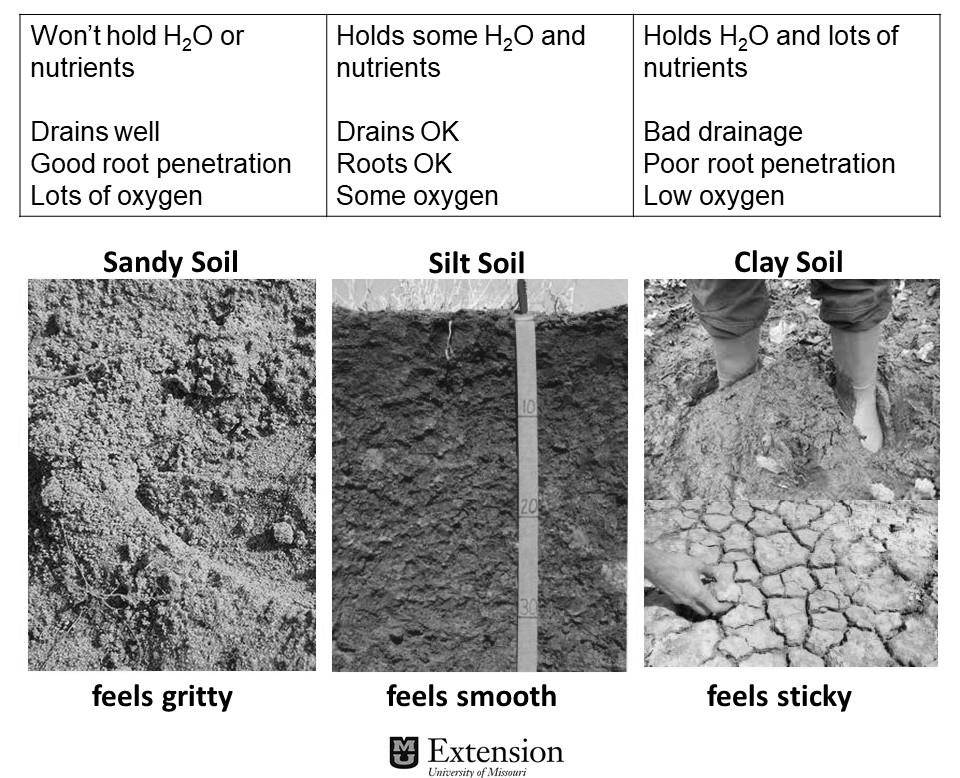 Basic Soil Components.png