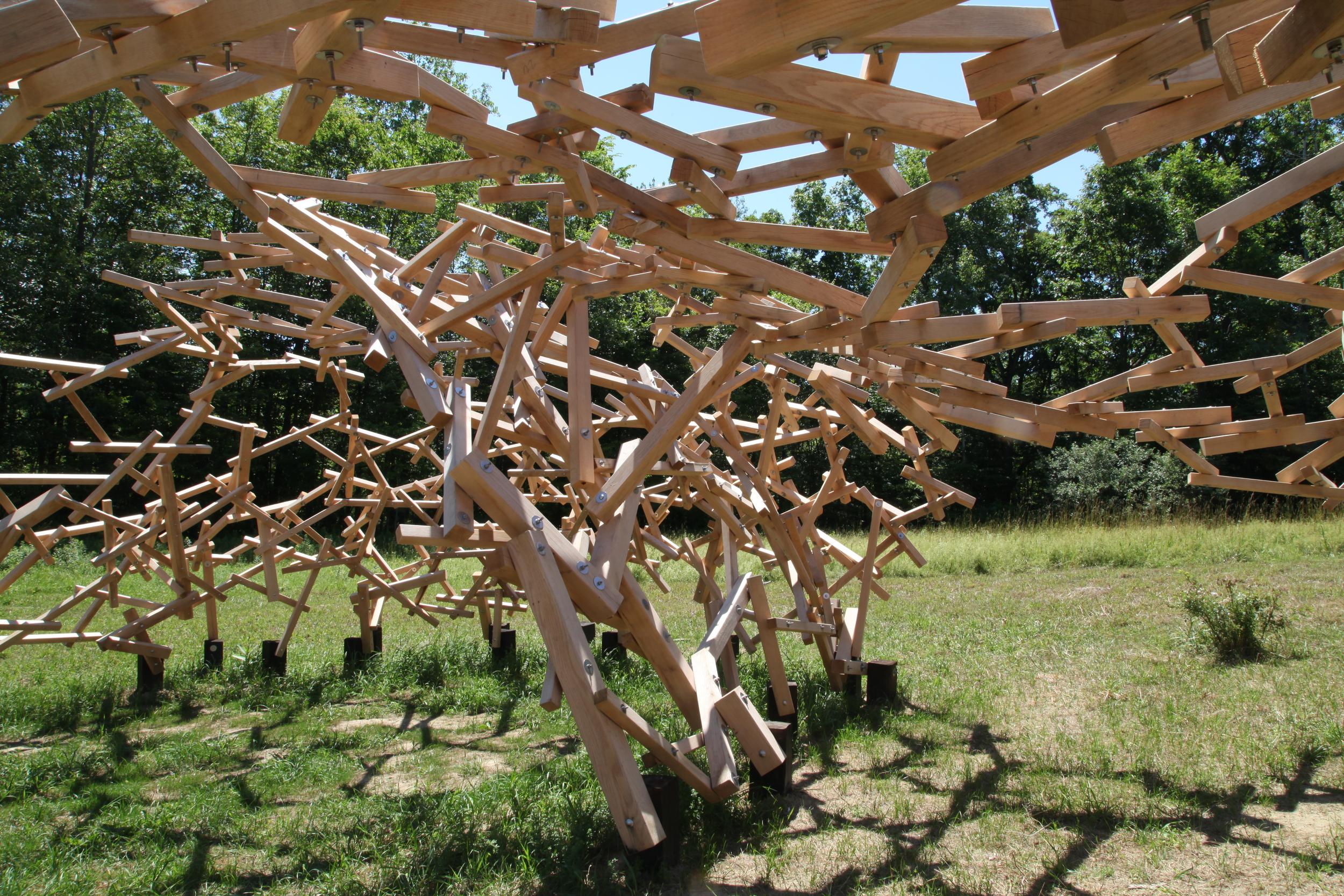 Species Niches pavilon credit HAT IMG_2574.JPG