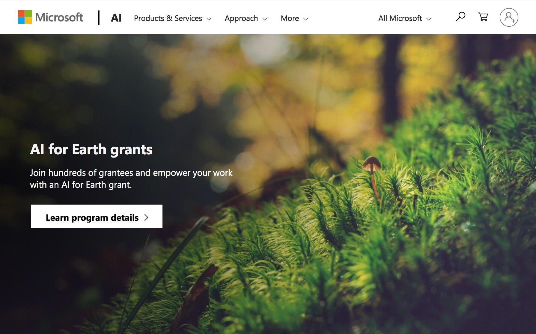 AI+for+Earth+Grant+announcement.jpg