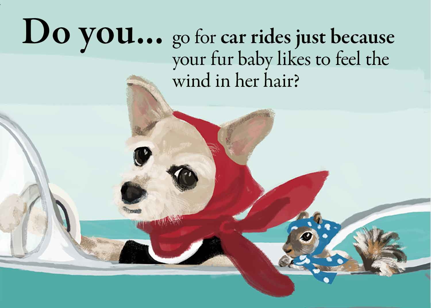 Do you take your dogs on car rides just because?