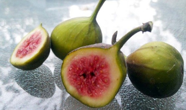 cut figs.jpg