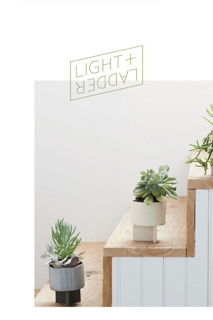 Light-and-Ladder-Foldout-catalog-2015-sm-1.jpg