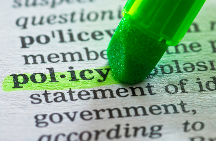 Policy dictionary with green highlight.jpg