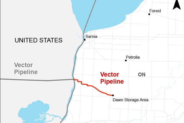VECTOR -