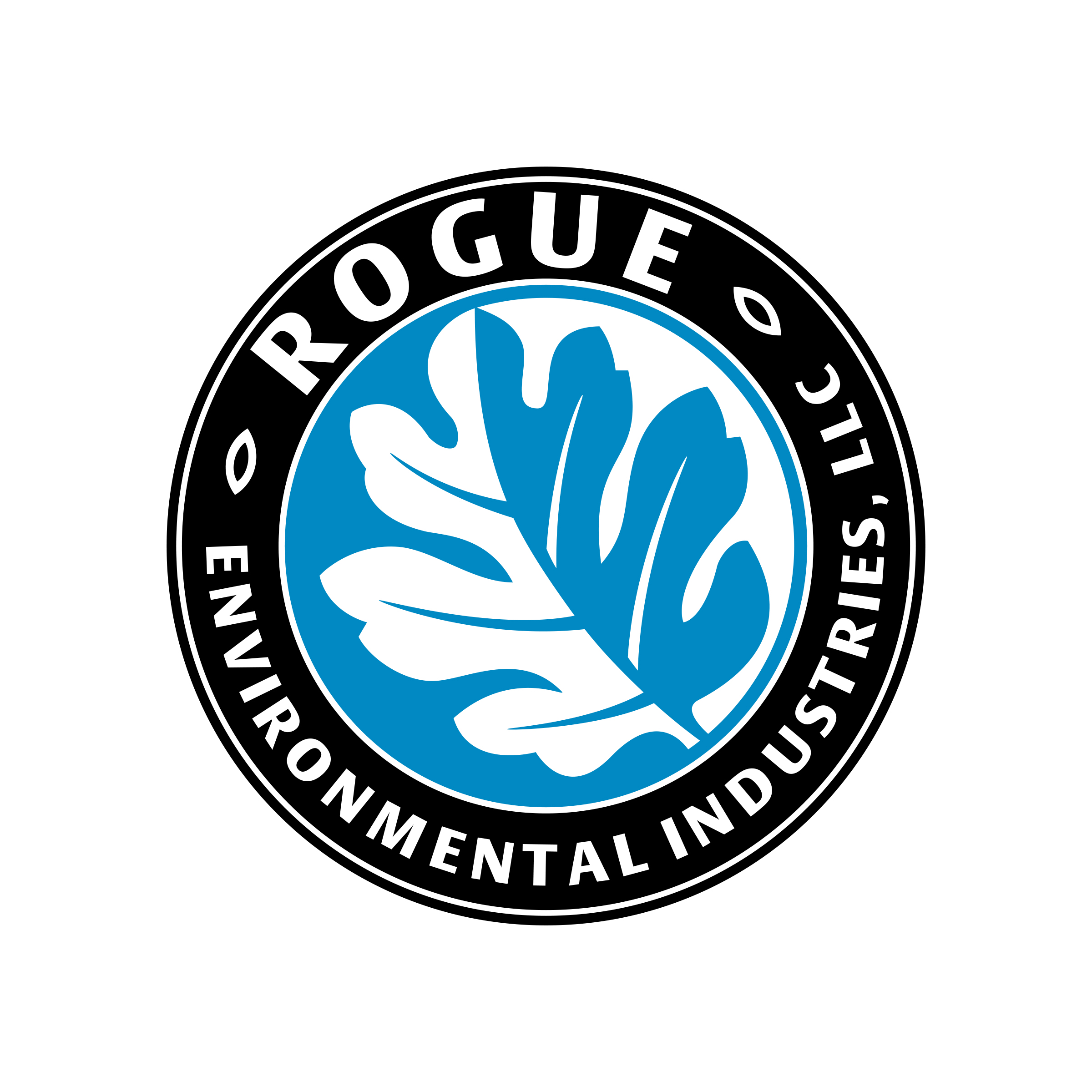 Rogue EI logo color no type.jpg