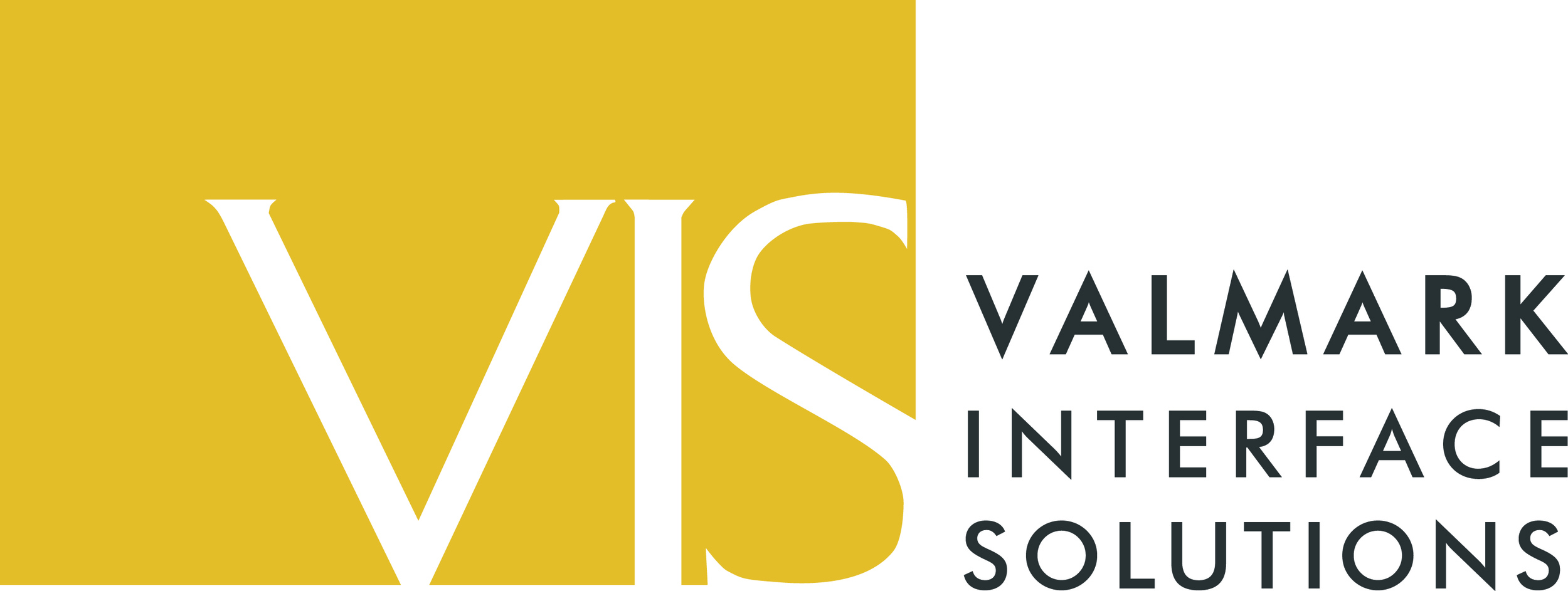 VIS logo.jpg