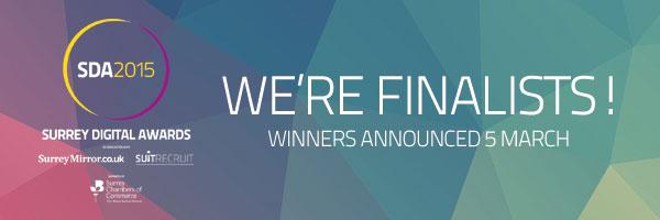 SDA2015_Finalist_2.jpg