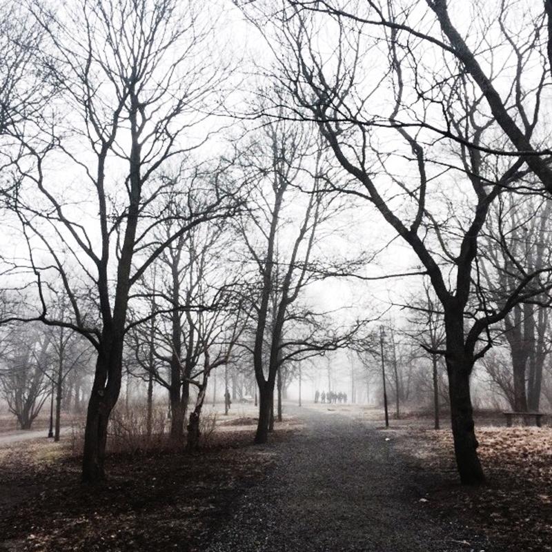 Gick genom dimman vid Gullmarsplan.