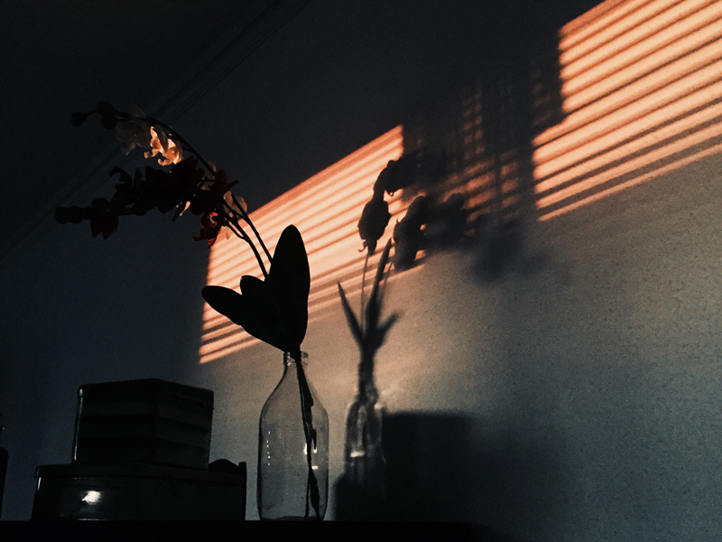 Riktigt bra ljusspel från mina trasiga persienner. Dom kan va bra att ha ibland ändå.