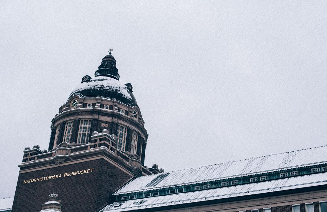 Tips på saker att göra i Stockholm; Naturhistoriska museet