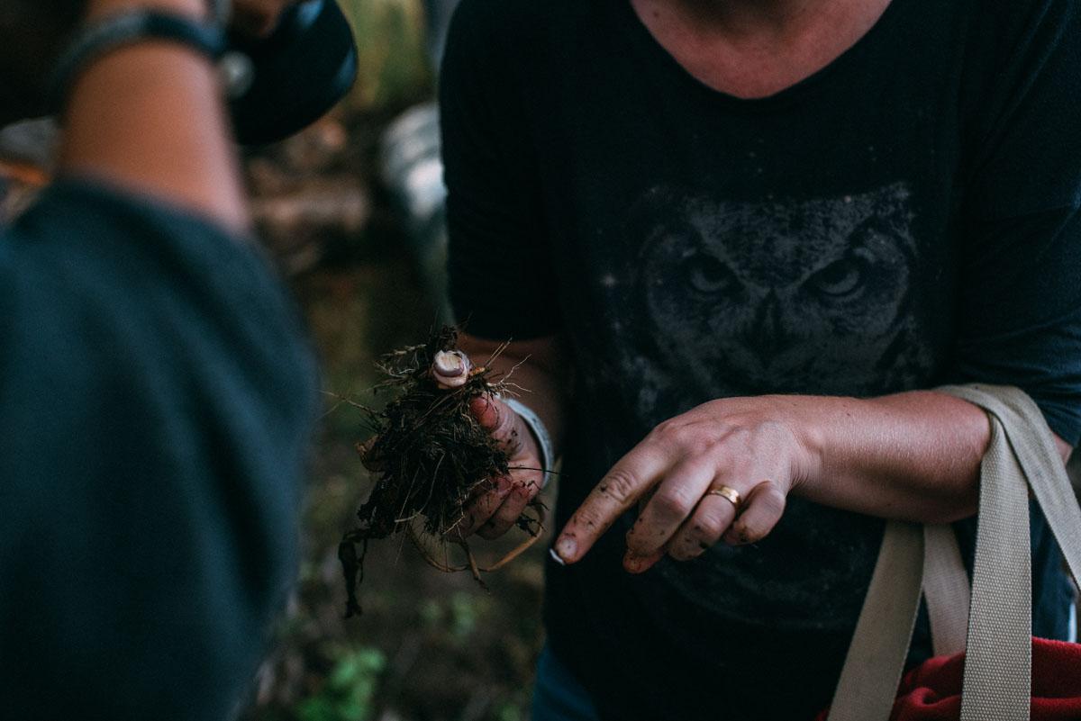 lära sig att äta rot på vass under summer workation på lindö med influencers of sweden