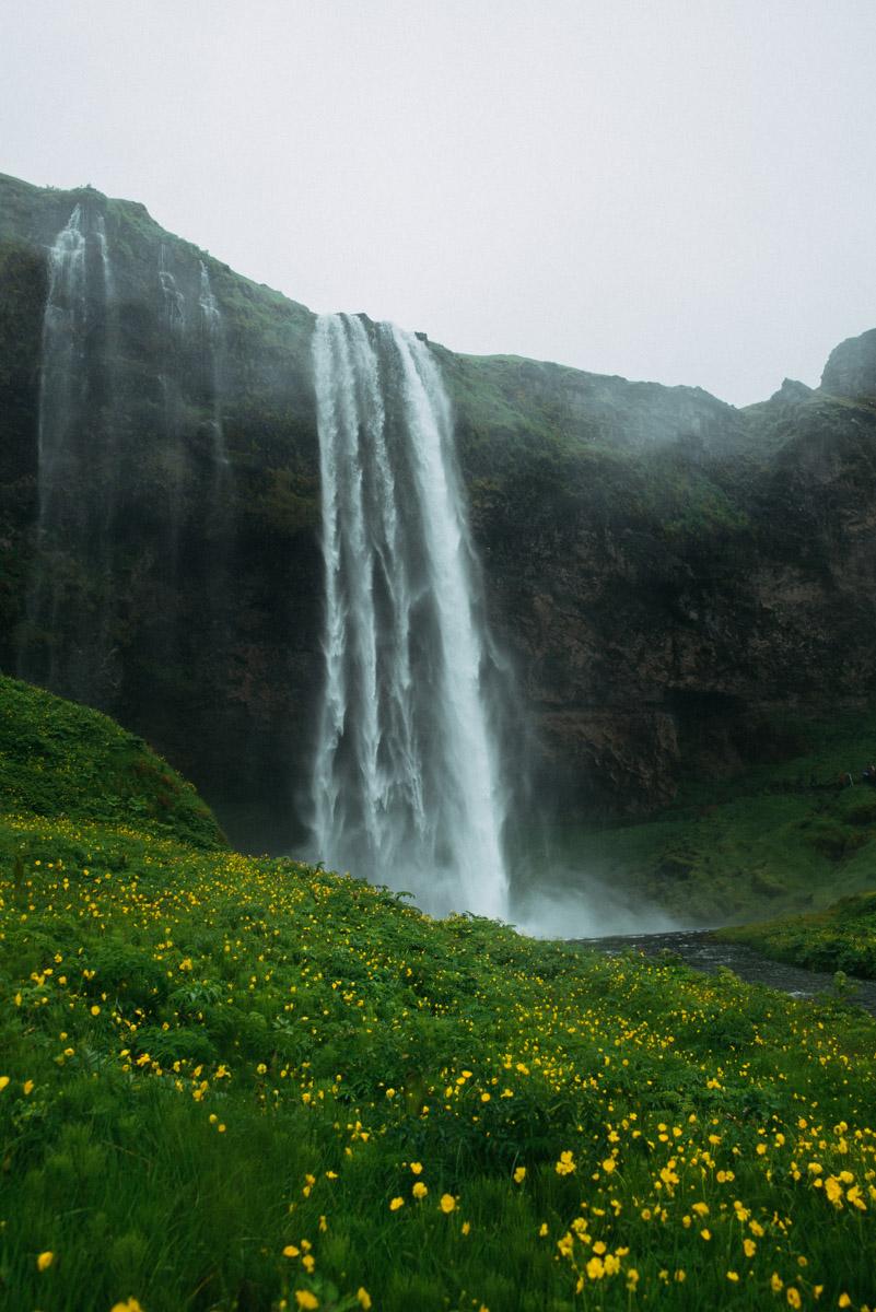 4 saker att se och göra på södra Island - Besök vattenfallet Seljalandsfoss