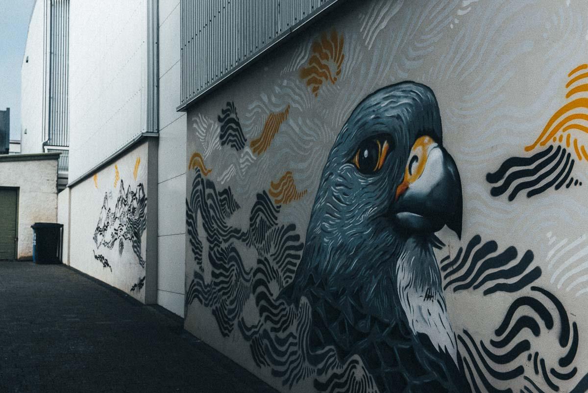 gatukonst på Reykjaviks gator