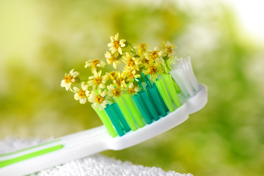 Flower Toothbrush