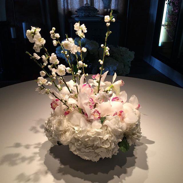 Beautiful Cymbidium orchid's with cherry blossoms.  #getwellsoon #cherryblossom #cymbidium #hydrangea #florist #beverlyhills #sticksandstones #floralarrangement #florist