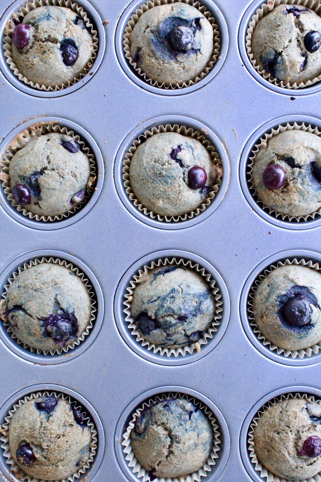 blueberry breakfast muffins - dairy-free