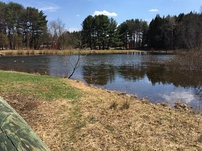 Brooksvale_pond.JPG