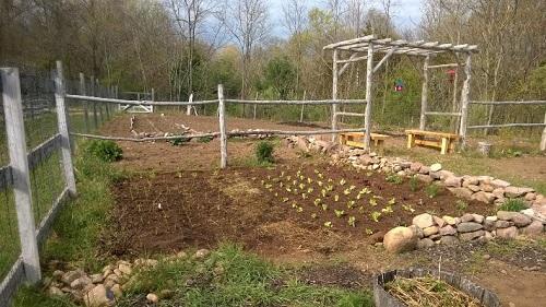 Brooksvale park farm garden