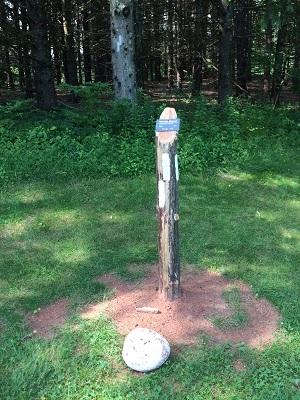 tree marker.JPG