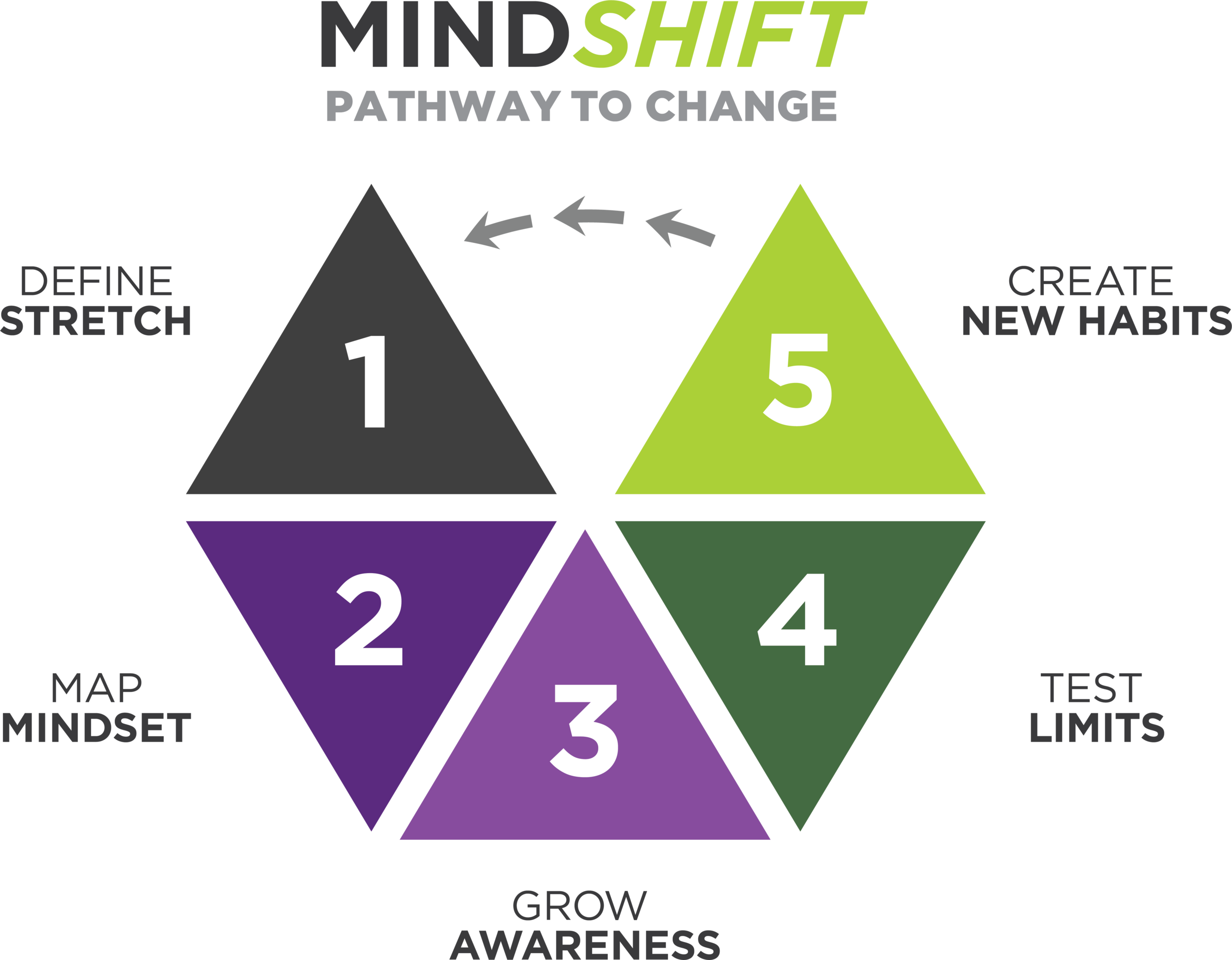 mindshift-hexagon-TITLE.png