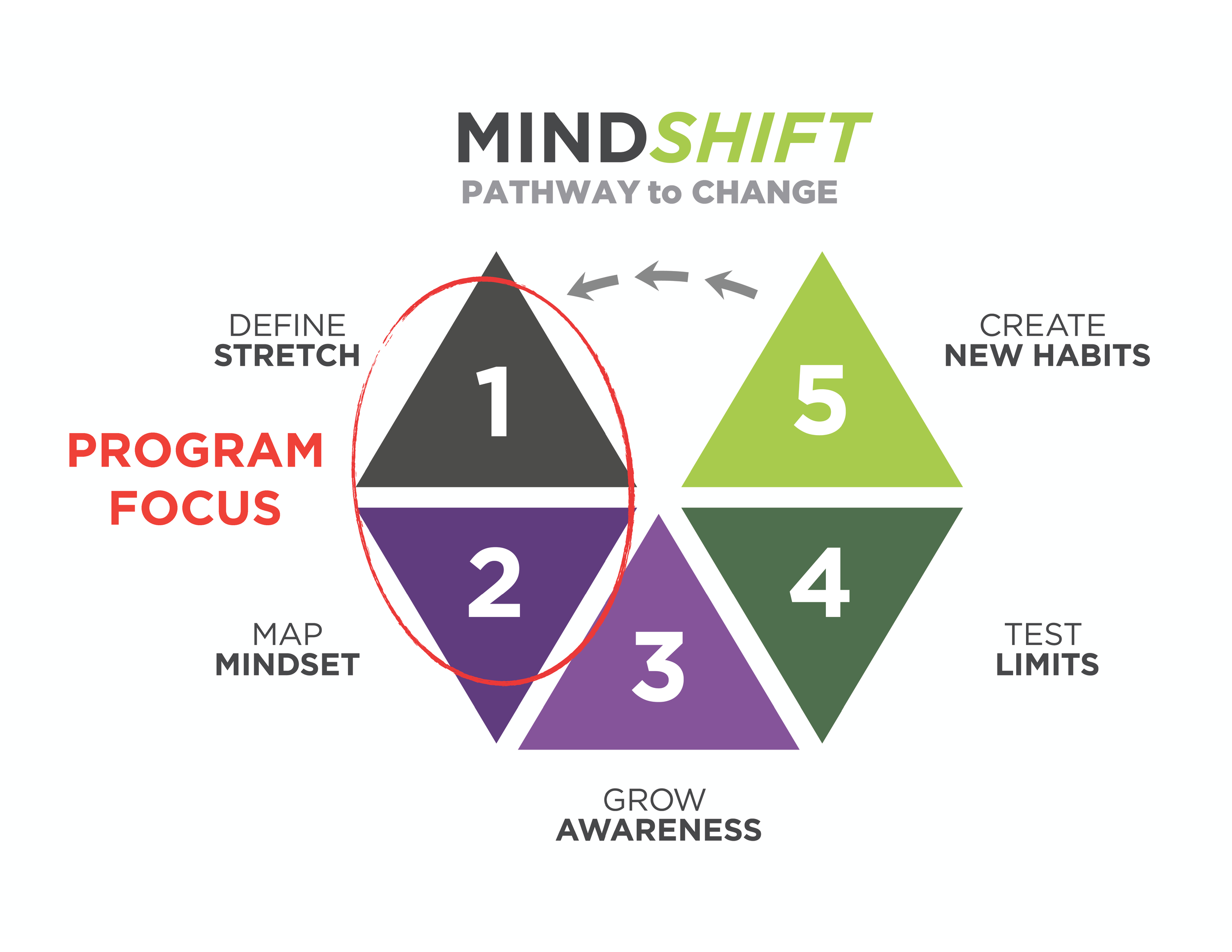 webpage-intro to mindshift visual.png