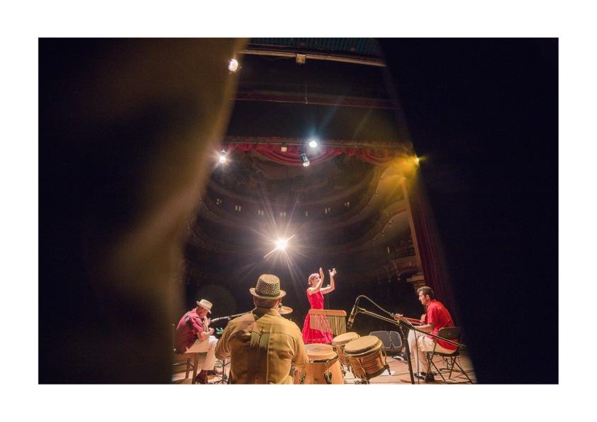 Aracombo en concierto.jpeg