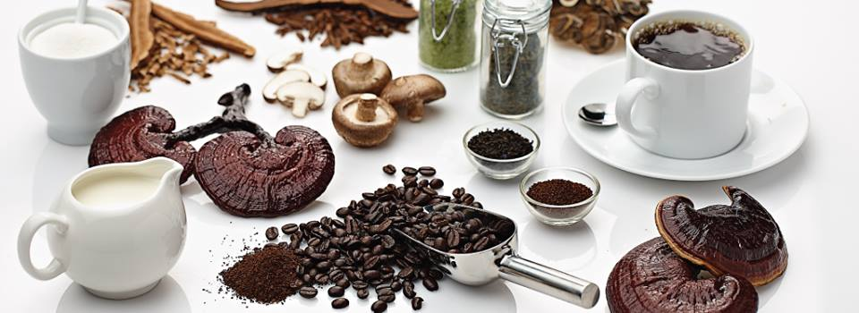 Medicinal Mushrooms - The health benefits of medicinal mushrooms are astronomical. Ask me how you can receive a free sample of this amazing brand.