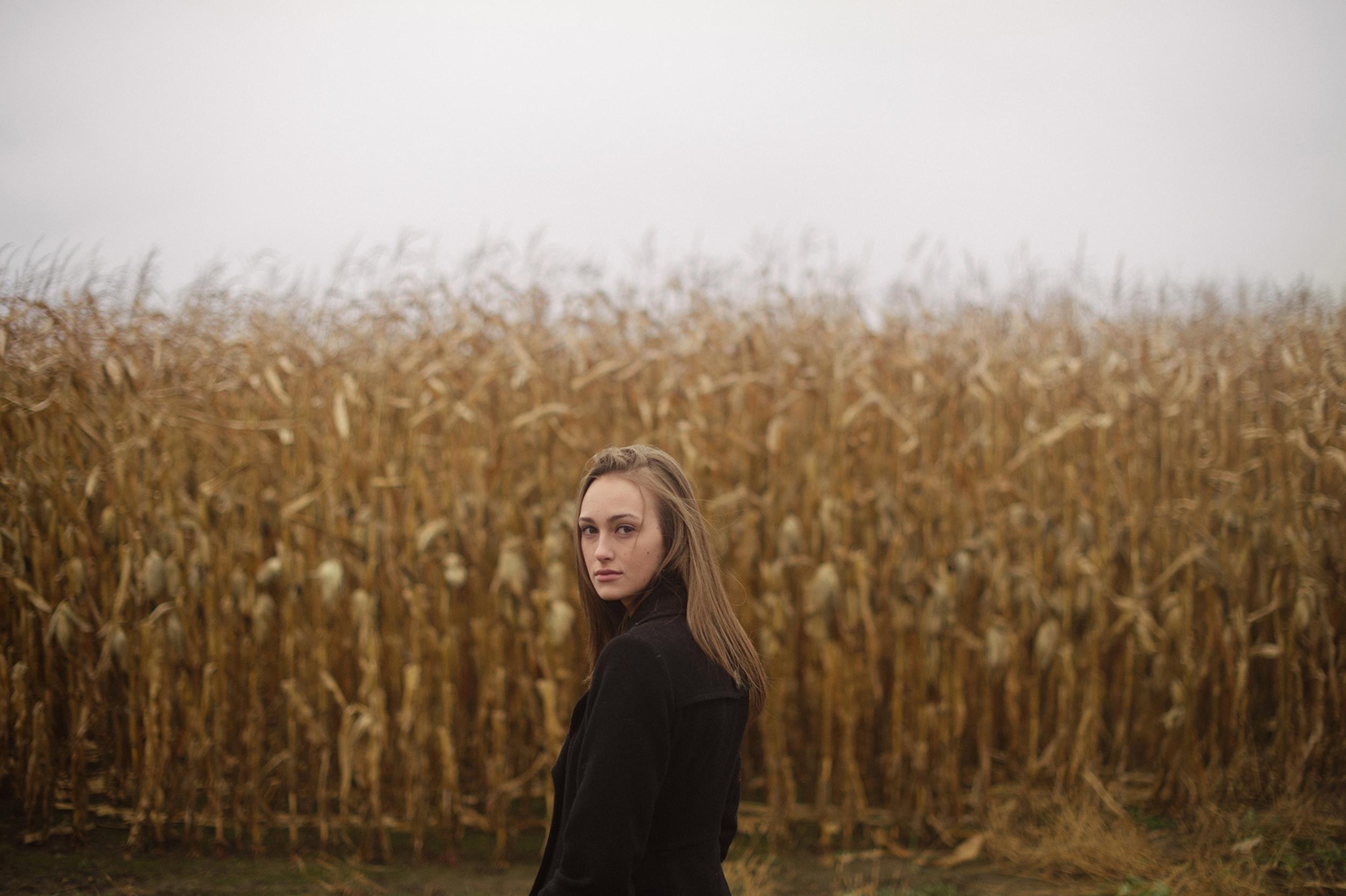 wheat19.jpg