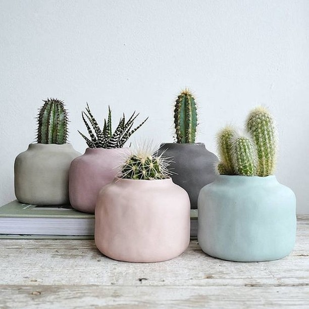 Tip of the Day: I think living in California lends it self to the love of nature & plants. I see a grouo cacti as collection in the center of a table many times they're in very uniform and the same vessels. Since they're so simple, making sure the planters are interesting really make your story different! make sure to pick succulents in varying heights too! Image via Lilac Coast