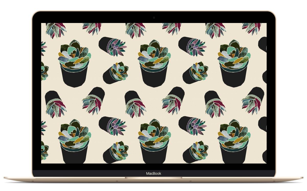 Succulent desktop wallpaper | Freckle & Fair