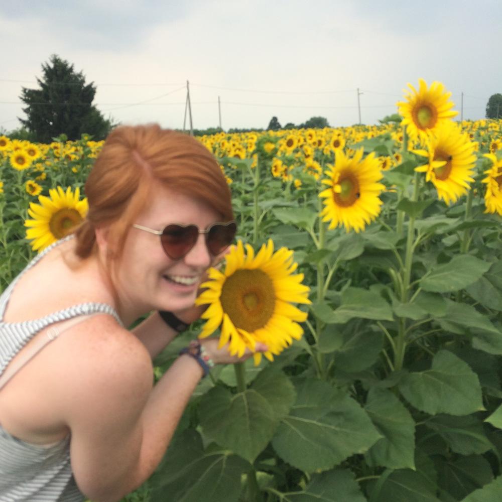 Sunflower field | Freckle & Fair