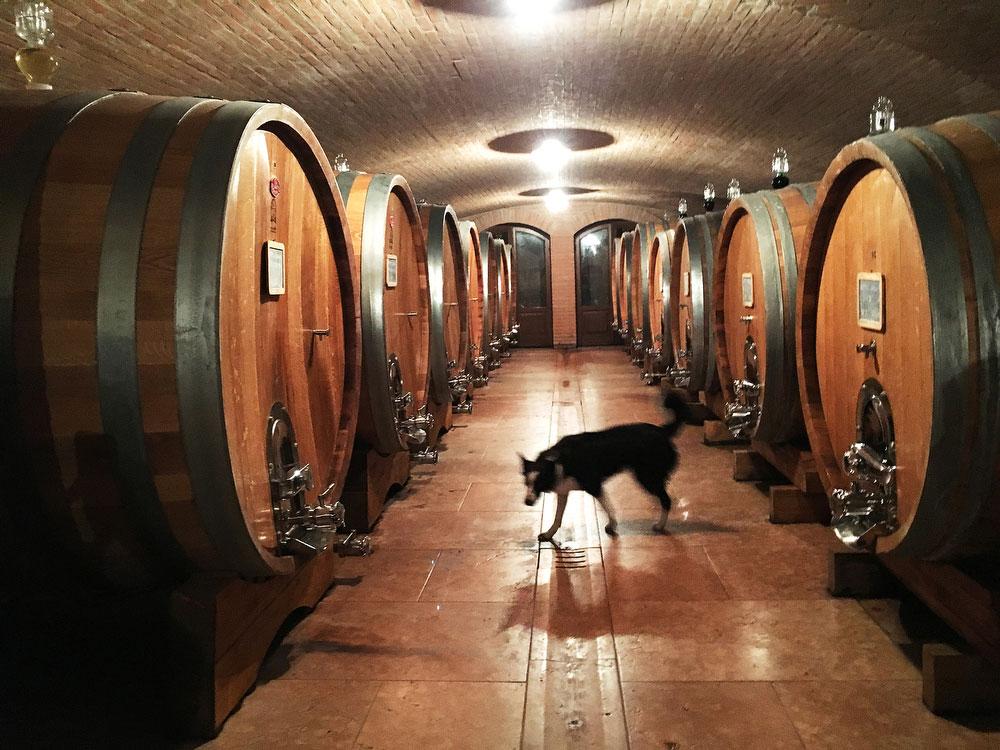 Prà winery in Soave