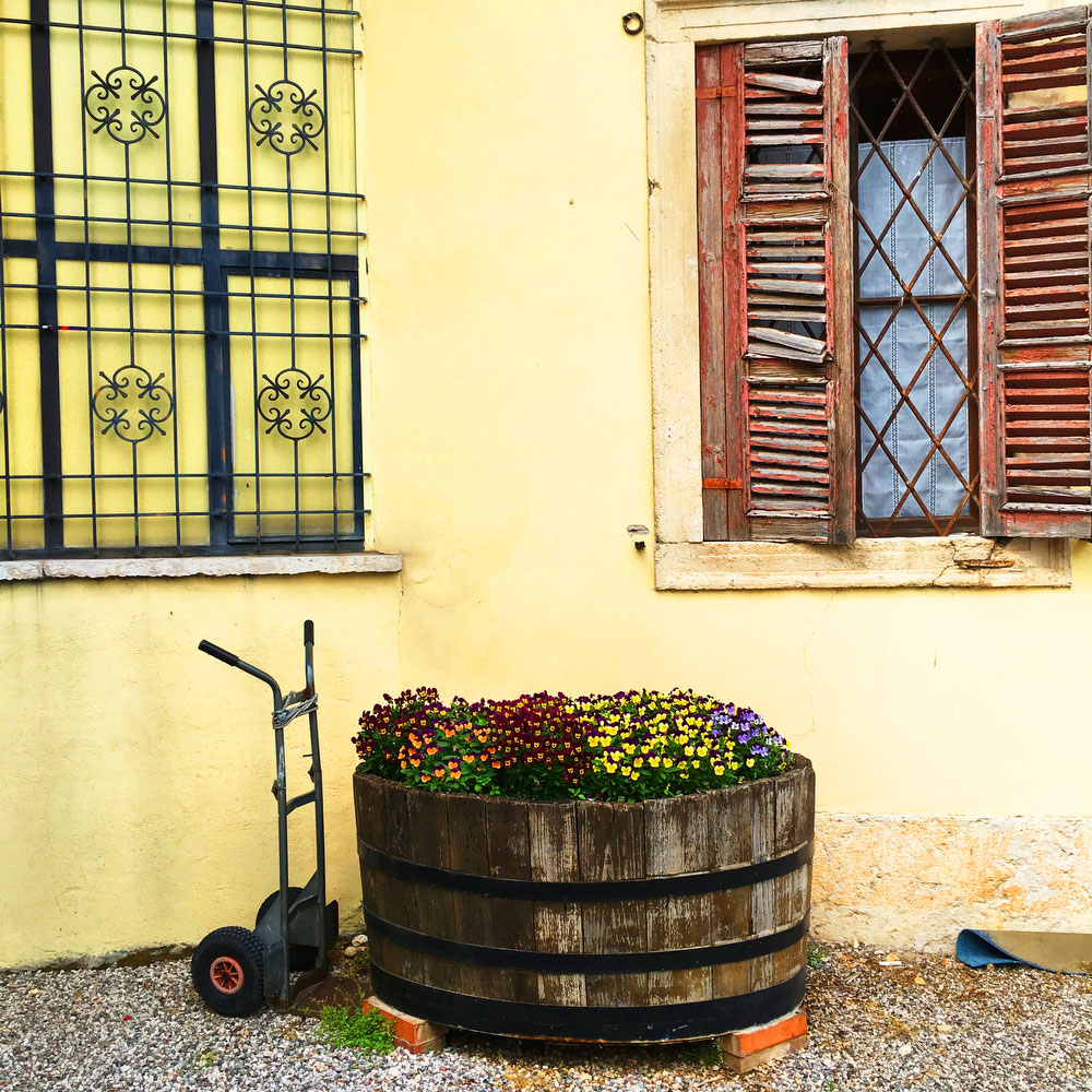 Fratelli Giuliari winery in Soave in northern Italy | freckleandfair.com