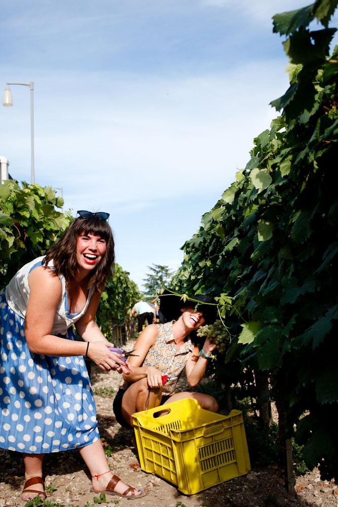 Sirose winery in Locorotondo, Puglia | freckleandfair.com