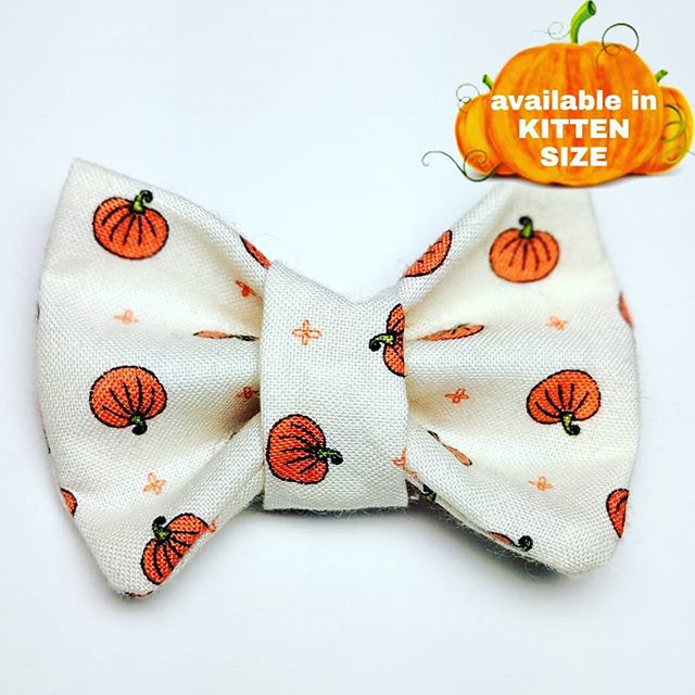 The #businesscatual shop has been stocked for Halloween and Christmas! Check out our new styles, including THREE styles available in kitten size!