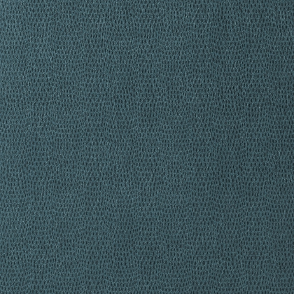 Chameleon in Teal  by Thibaut
