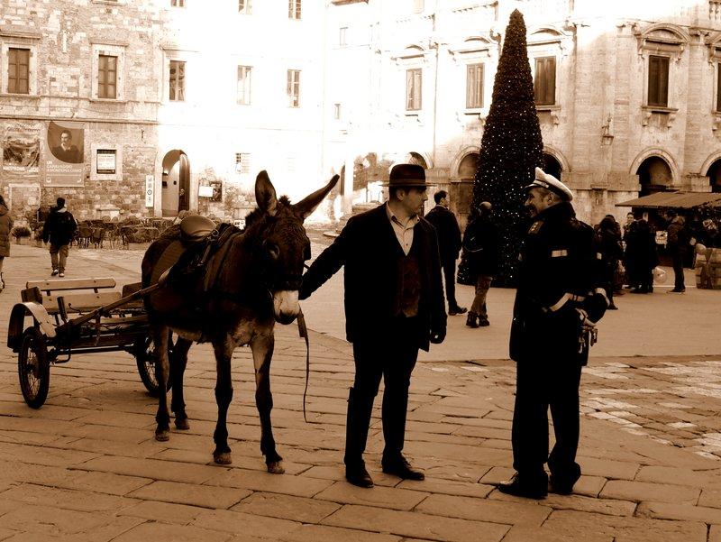 Donkey ride anyone?