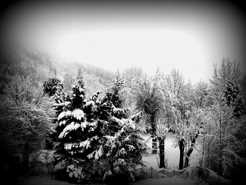 Fresh snow!