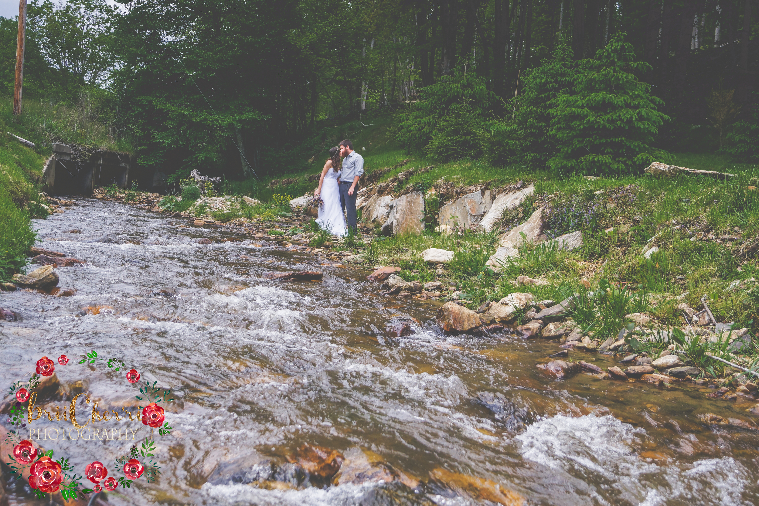 Memory mountain Mars Hill NC Wedding