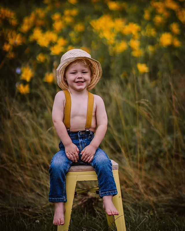Flower field minis are available for the next two weeks only 🌸🌻💐🌼🌻 Book now at briicherriphoto.com ❤️ #boone #northcarolina #828 #336 #northcarolina #familyphotography #wnc