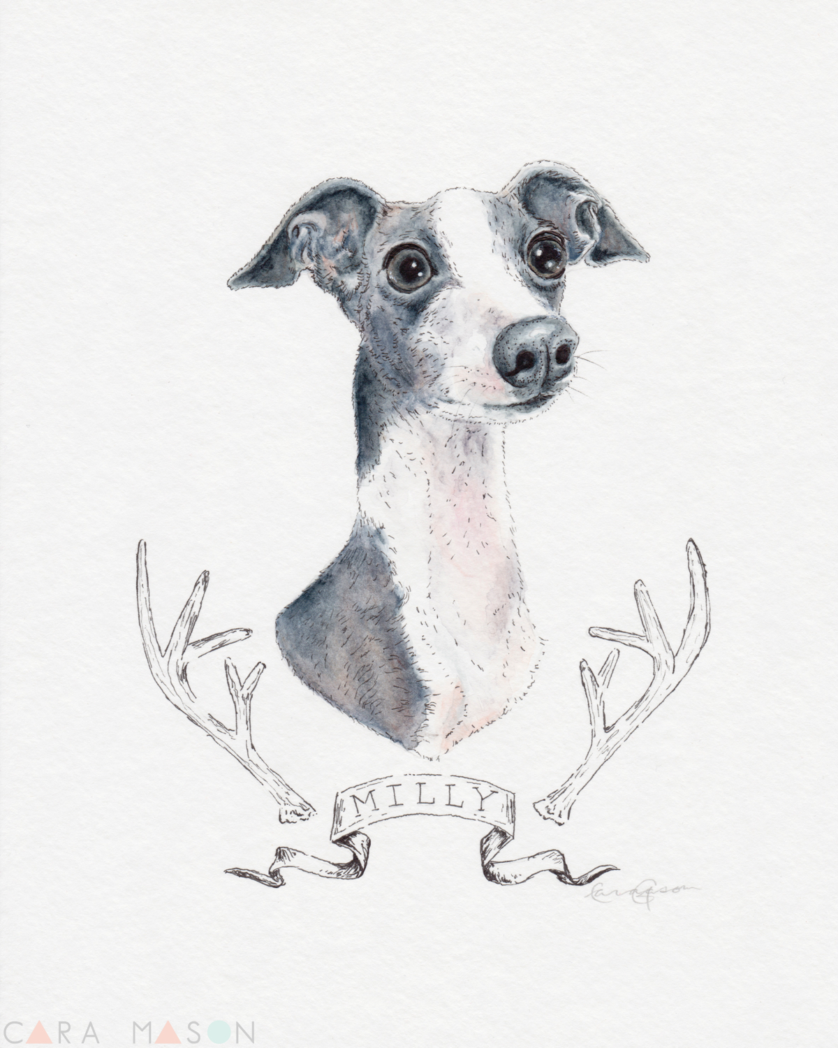 Besides my own darling dog portraits, I think Milly is my one of favorites. I've seen many of my furry face friends become beautiful watercolors through Cara's work.