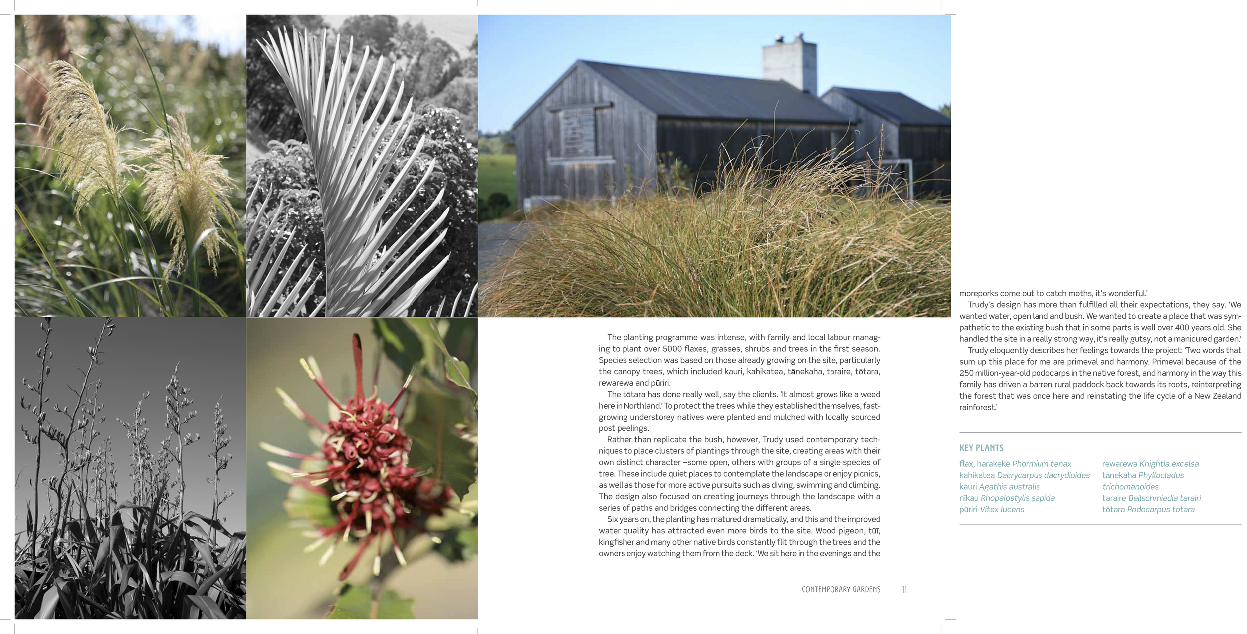 Contemporary_Gardens_INT_sample chapter reworked[1].pdf-7.jpg