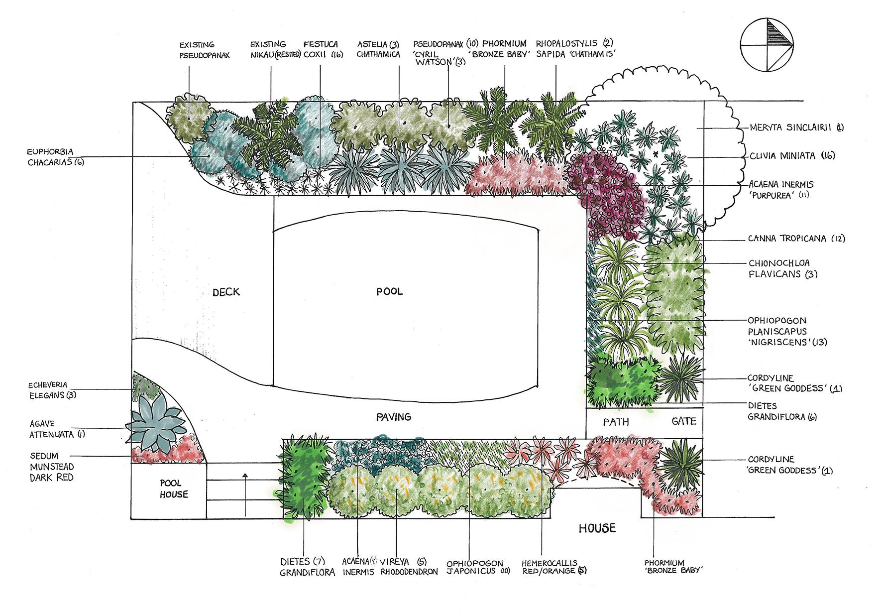 seymour garden.jpg