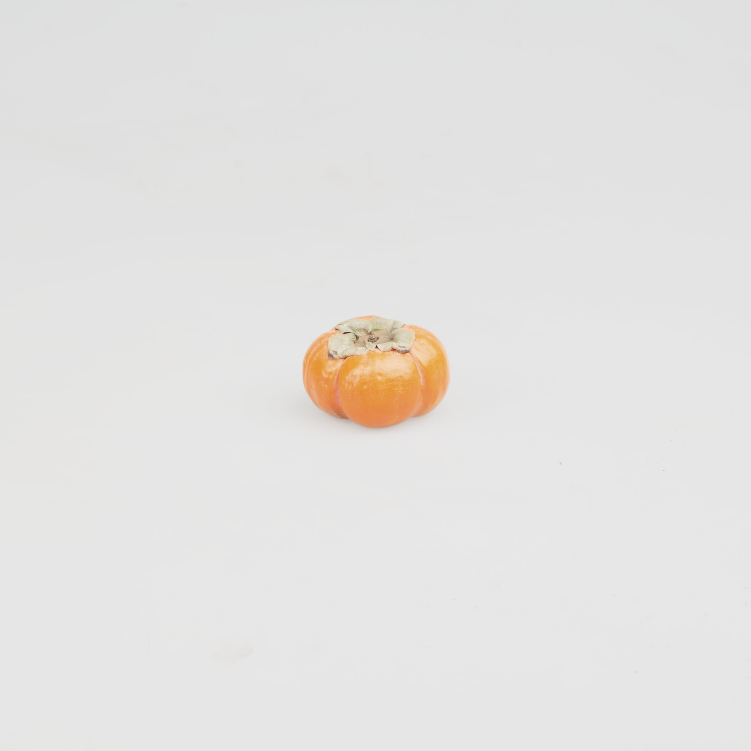28_Oct_Persimmon copy.jpg