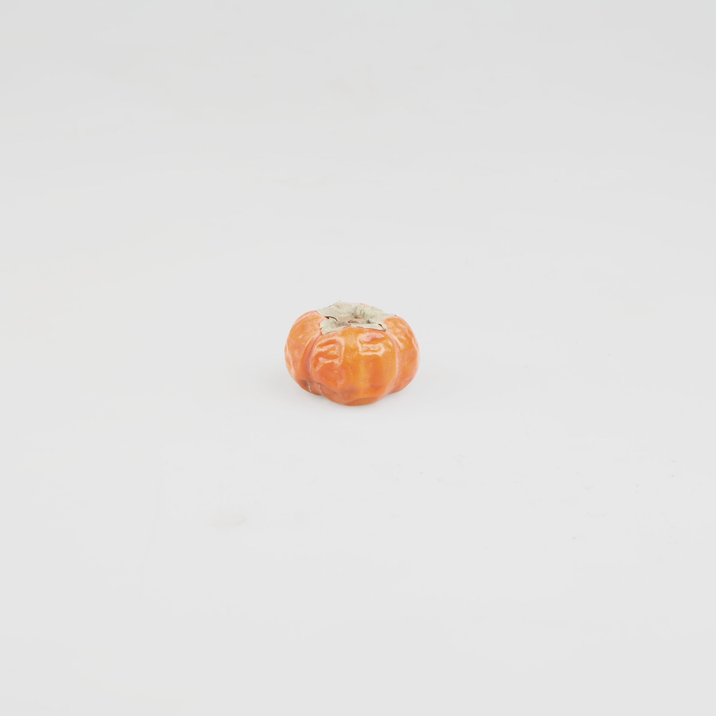 31_Oct_Persimmon copy.jpg