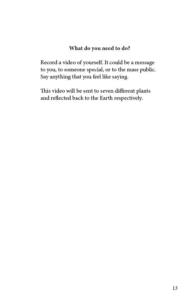 Memorial Proposal Pages13.jpg