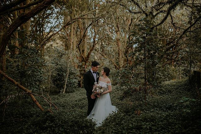 My heart thinking back on this glorious day on Saturday with Jenny and Tommy 💛✨ Officially started my 2019-2020 wedding season and it just re instilled in me the reason why I do this job. I honestly just LOVE being apart of people's days. To add to that happy and fun atmosphere, to laugh, cry, hug, dance and sing. I love when I see couples let down their walls around me and allow me to capture them in their truest form. It's something I feel so grateful to be given; for people to be real with me and to trust me. And to laugh with people on one of the most memorable days of their lives.  It sounds cheesy but I don't even care because I truly feel like I have so much purpose doing what I do. And I'm just so thankful for all you humans for giving me this purpose.  Here's to the next few months of epic-ness with you all! 🤙🏼☀️✨ . . . #weddingstyling #kinfolk #nouba #togetherjournal #bohostyle #lookslikefilm #tribearchipelago #vsco #creativelifehappylife #weddingphotography #creativepreneur #createcultivate #pursuepretty #flashesofdelight #creativeentrepreneur #chasinglight #thehappynow #weddinginspo #thatsdarling #darlingmovement #livethelittlethings #seekthesimplicity #chooselovely #prettylittlethings #lovelysquares #enjoythelittlethings #thatauthenthicfeeling #postitfortheaesthetic #aquietstyle #inspiremyinstagram